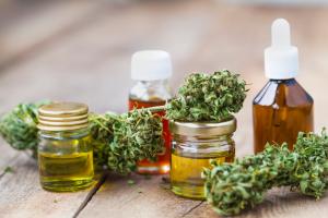 Cannabispflanze und Oele mit CBD